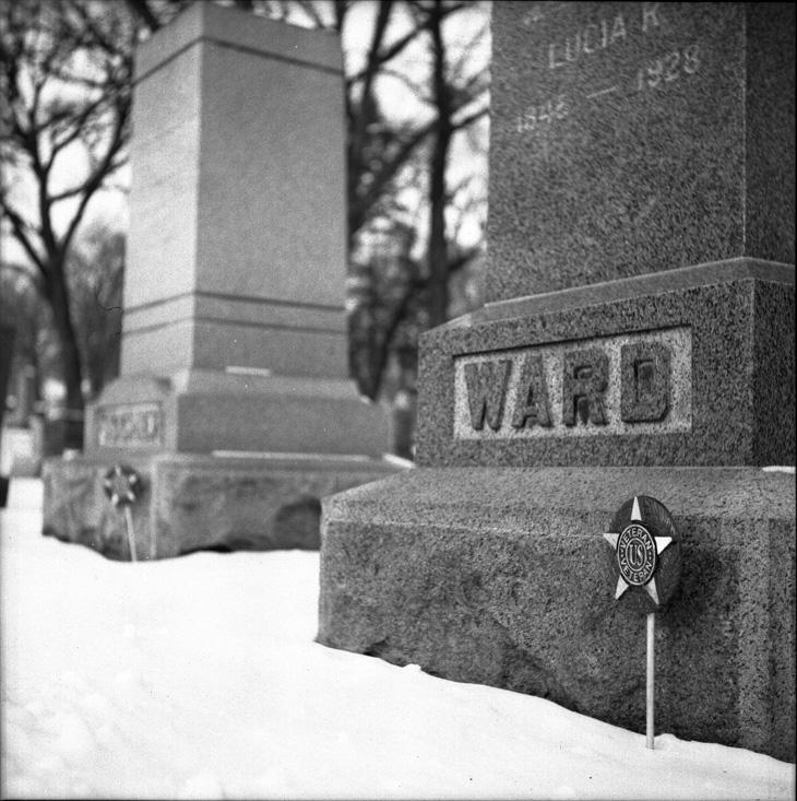ward_veteran